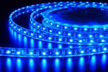 Светодиодная лента LED влагостойкая 12V 5 метров (Синяя)